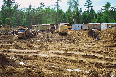 Disruption and deforestation at logging camp in Ussuri Forest, Primorskiy Region, Far East Russia  -  Yuri Shibnev/ npl