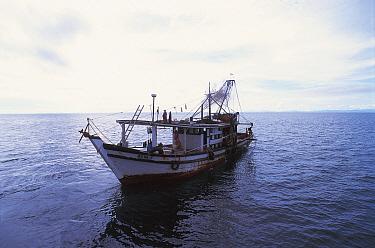 Trawler boat Sulu-sulawesi seas, Indo-pacific  -  Jurgen Freund/ npl