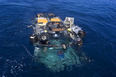 Launch of the deep sea submersible Johnson Sealink II, Atlantic  -  David Shale/ npl