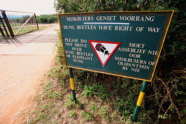 Sign protecting Flightless dung beetle (Circellium bacchus) Addo_Elephant park, South Africa  -  Andrew Parkinson/ npl