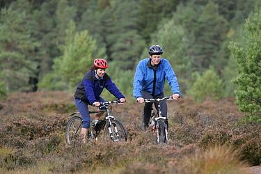 Mountain bikers on forest track, Cairngorms National Park, Scotland, UK  -  Pete Cairns/ npl