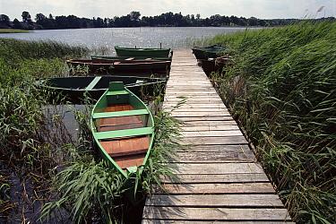 Boats at jetty Mazurski NP, Poland, Europe  -  Artur Tabor/ npl