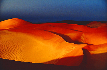 Evening light on sand dunes, Sossusvlei NP, Botswana, Southern Africa  -  Francois Savigny/ npl