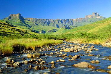 View of Tugela river and Amphitheatre, Royal Natal NP, KZN, South Africa  -  Pat De La Harpe/ npl