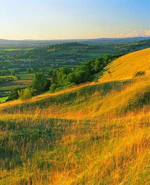 Unimproved limestone grassland on Cotswold escarpment, Selsley Common, Gloucestershire, UK 200  -  Nick Turner/ npl