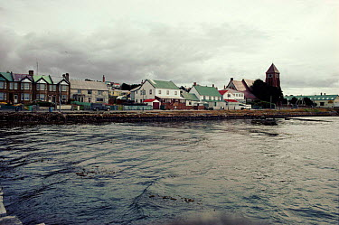Port Stanley from sea, Falkland Islands  -  Simon King/ npl