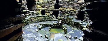 Inside an Iron age broch, Mousa RSPB reserve, Shetland Is, Scotland, UK  -  David Tipling/ npl