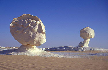 Chalk rock eroded by wind and weathering to resemble mushroom shape, White desert, Egypt  -  Dan Rees/ npl