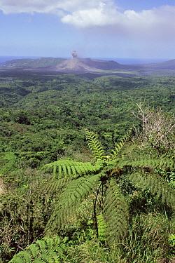 Lowland forest and Mount Yasur volcano erupting, Tanna Island, Vanuatu, Melanesia  -  Nick Turner/ npl