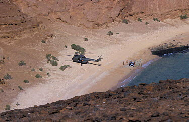 French army arriving by helicopter on Seven Brothers Is, Djibouti, East Africa  -  Marguerite Smits Van Oyen/ npl