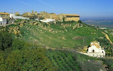 Carmona, Seville, Andalucia, Spain  -  Jose B. Ruiz/ npl