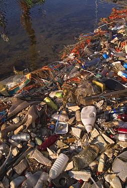 Plastic bottles and other rubbish littering waterways, Zeebrugge, Belgium  -  Philippe Clement/ npl