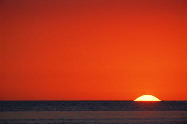 Sun setting over Gulf of Mexico, Florida, USA  -  Rolf Nussbaumer/ npl