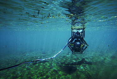 Minisub used to film hippos underwater for BBC tv series 'Supernatural' Mzima, Kenya  -  John Downer/ npl