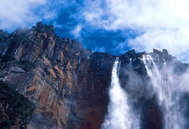 Angel Falls,Canaima NP Venezuela, South America  -  David Welling/ npl