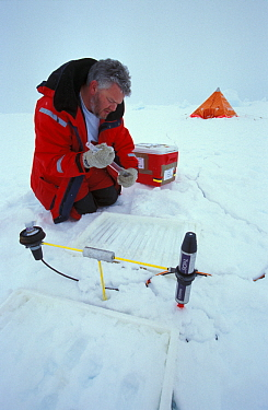 Researcher Dr David Thomas measuring effects of UV radiation on the ice floe ISPOL (ICE Station Polarstern) Expedition 2004, 2005 from Alfred Wegener Institute, Bremerhaven, Germany The Icebreaker Pol...  -  Ingo Arndt/ npl
