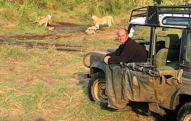 Simon King with African lion pride and cubs (Panthera leo) during Big Cat Diary series filming, Masai Mara NR, Kenya  -  Angela Scott/ npl