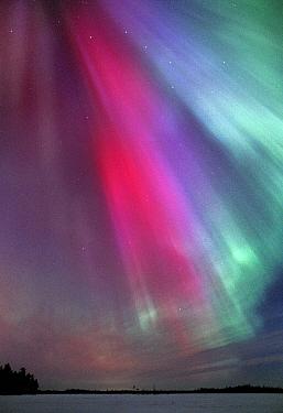 Aurora borealis colours in night sky, northern Finland, winter  -  Jorma Luhta/ npl