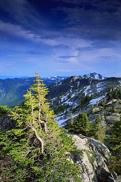 Looking out over Kootenay Mountains, Kokanee Glacier Provincial Park, British Columbia, Canada  -  David Noton/ npl