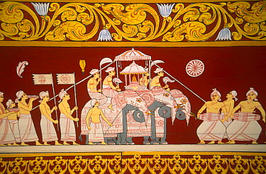 Elephant frieze in Temple of Sacred Tooth Relic, Kandy, Sri Lanka  -  Toby Sinclair/ npl