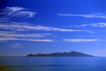 Kapiti Island, off the west coast of North Island, New Zealand  -  David Noton/ npl
