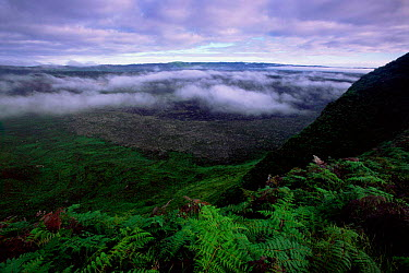 View from rim of cone of active volcano, Sierra Negra, Isabela Is, Galapagos  -  Pete Oxford/ npl