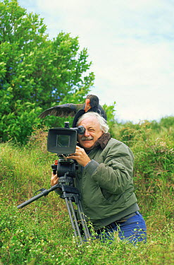 Camerman Martin Saunders with Takahe (Phorphyrio hochstetteri) on his head while filming for BBC 'Life of Birds', New Zealand, 1997  -  Peter Bassett/ npl