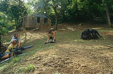 Filming Charlotte Uhlenbroek with Chimpanzees (Pan troglodytes) Gombe NP, Tanzania  -  Miles Barton/ npl