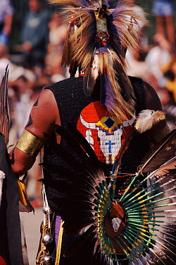 Back view of Native American in feather costume at Pow Wow dance Wisconsin, USA  -  Larry Michael/ npl