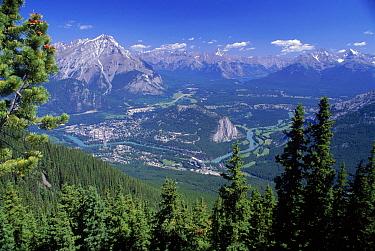 View from Tea House Banff NP, Alberta, Canada  -  Jose Schell/ npl