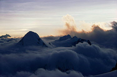 Sun setting over Pumori from North Col of Everest with clouds below, Himalayas, Nepal  -  Leo & Mandy Dickinson/ npl
