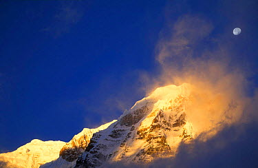 Moon over summit of Annapurna from Annapurna Base Camp Dawn, Himalayas, Nepal  -  David Noton/ npl