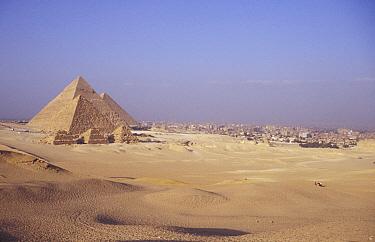 Cairo and the Pyramids, Egypt  -  Dan Rees/ npl