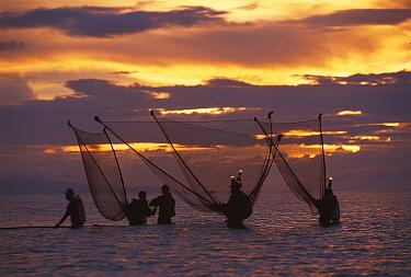 Shrimp fishermen with push nets and ligts at sunset, Bicol, Philippines  -  Jurgen Freund/ npl