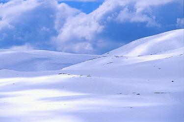 Winter landscape, Norefjell mountains, Buskerud, Norway  -  Asgeir Helgestad/ npl