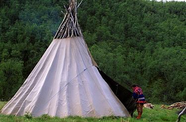 Sami building lavvu tent, Alta river, Samiland, Lapland, Finnmark, Northern Norway 1997  -  Pete Oxford/ npl