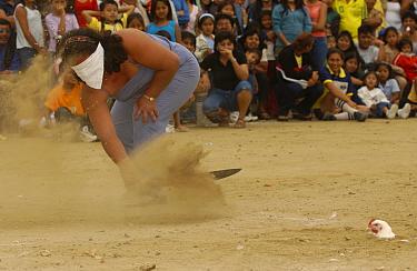 Woman competing in chicken decapitation contest, Puerto Lopez, Ecuador 2004  -  Pete Oxford/ npl