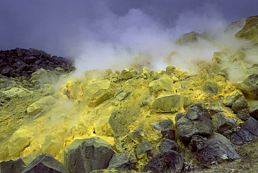 Sulphur fulmerole in crater of active volcano, Sierra Negra, Isabela Is, Galapagos  -  Pete Oxford/ npl