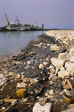 Oil pollution on rocky shore from the Iran, Iraq War, 1980-1988, Bahrian  -  Francis Abbott/ npl