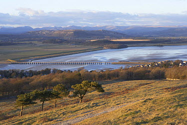 View from Arnside Knott towards Cumbria, across Morecambe Bay and Kent river Estuary, Lancashire, UK  -  Jason Smalley/ npl