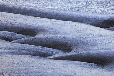 Patterns in mudflats, Morecambe bay, Lancashire, UK  -  Jason Smalley/ npl