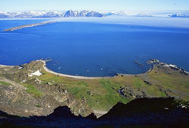 View across Bellsund Fjord, looking down from highland, Bellsund, Svalbard, Norway  -  Steve Packham/ npl