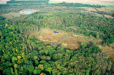 Aerial view of Chippenham Fen, English Nature Reserve, Cambridgeshire, UK  -  Martin H Smith/ npl