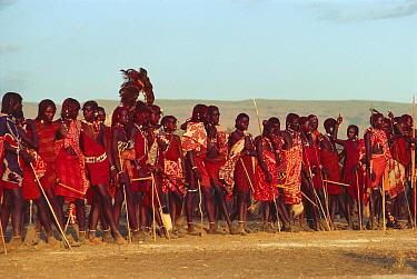 Maasai 'Emowuo-o-lkiteng ceremony, Kedong Valley, Rift valley, Kenya Initiates listen to elder's speech 1985  -  Jabruson/ npl