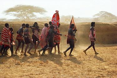 Maasai 'E-unoto ceremony, Kedong Valley, Rift valley, Kenya Il-murran dancers 1985  -  Jabruson/ npl