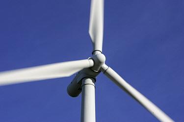 Wind farm turbine blades close up, Moray, Scotland, UK  -  Pete Cairns/ npl
