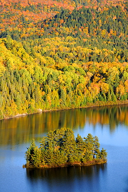 Aerial view of Pine island and Lake Wapizagonke in autumn La Mauricie National Park, Quebec, Canada, October 2010  -  Eric Baccega/ npl