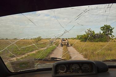 View of the Savannah grasslands through a shattered windscreen, Rupununi, Guyana, March 2010  -  Pete Oxford/ npl