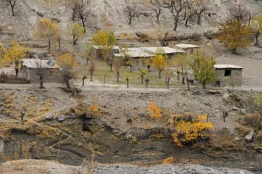 A highland village Naryn National Park, Kyrgyzstan, Central Asia, November  -  Eric Dragesco/ npl
