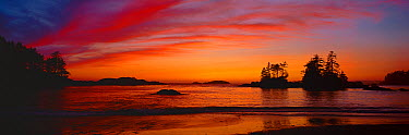 Sunset over Ucluth Beach West coast of Vancouver Island, Canada, September 2010  -  Matthew Maran/ npl